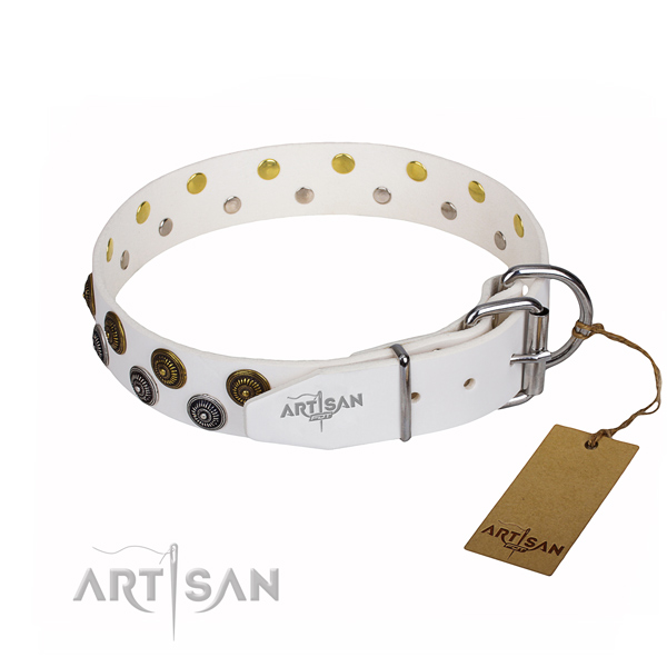 Everyday use full grain natural leather collar with adornments for your doggie