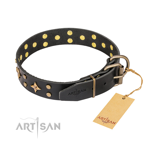 Unique full grain leather dog collar for walking