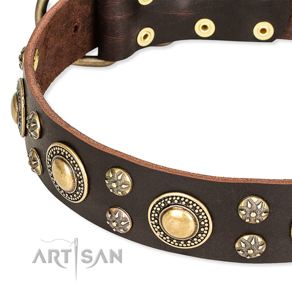 Daily walking full grain genuine leather collar with corrosion proof buckle and D-ring