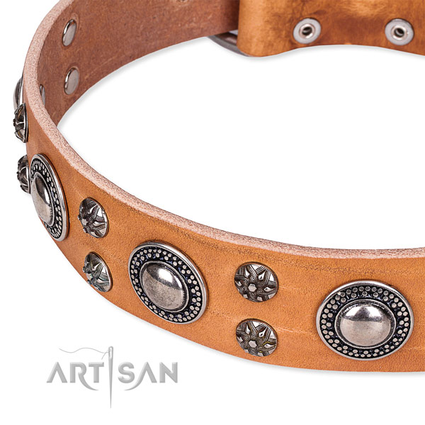 Handy use leather collar with strong buckle and D-ring