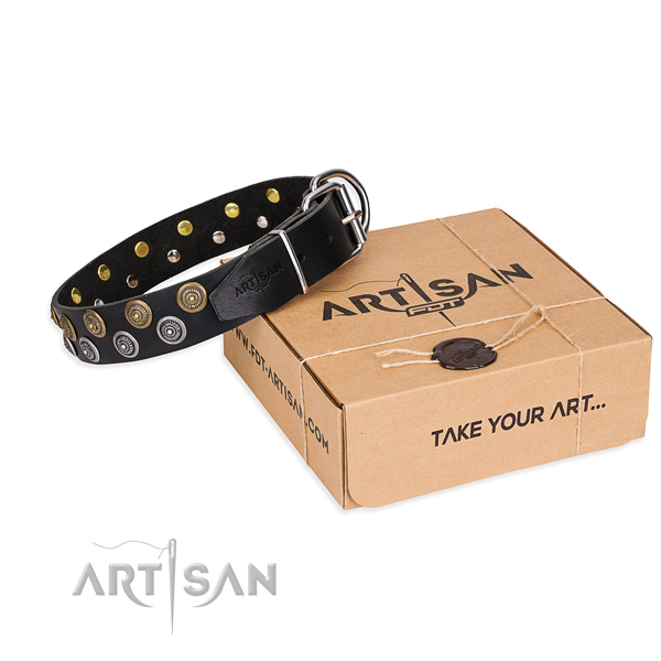 Leather dog collar with embellishments for walking