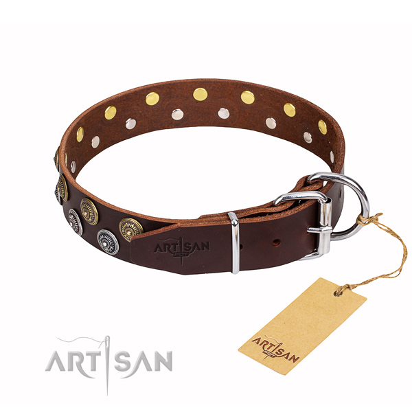 Daily walking leather collar with decorations for your four-legged friend