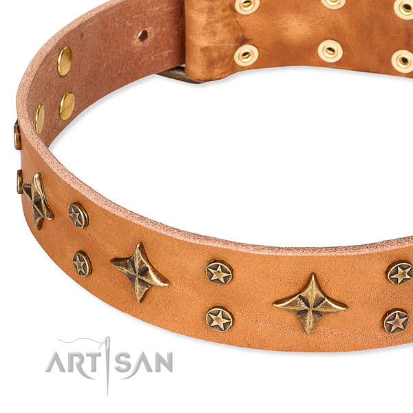 Full grain genuine leather dog collar with unique studs