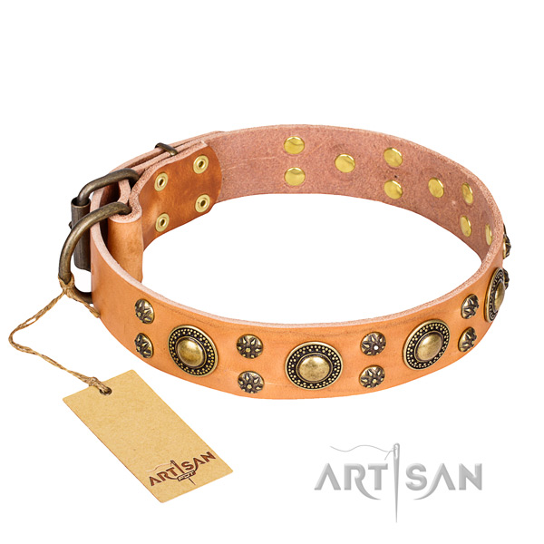 Unusual full grain leather dog collar for daily use