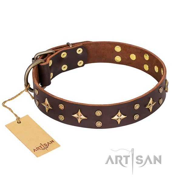 Amazing full grain natural leather dog collar for daily walking