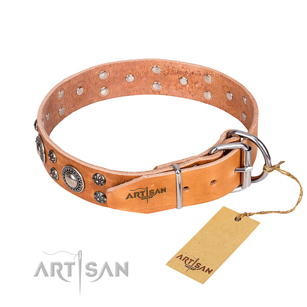 Everyday walking leather collar with adornments for your dog