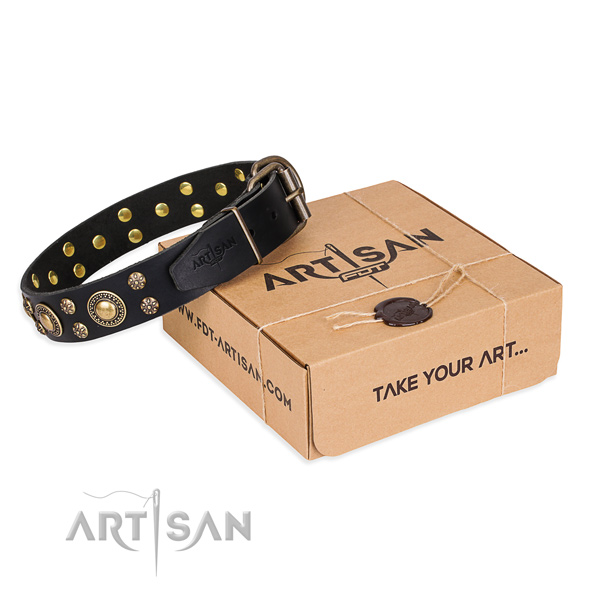 Perfect fit full grain genuine leather dog collar for daily walking