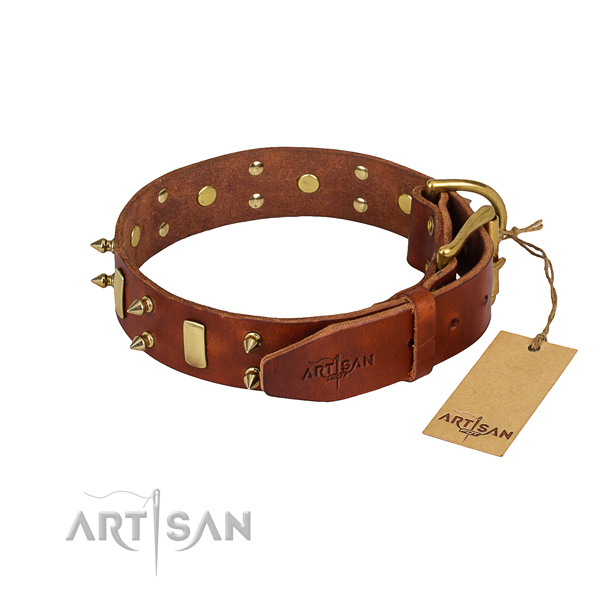 Sturdy leather dog collar with brass plated elements