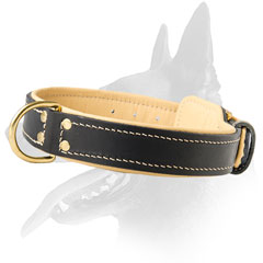 Belgian Malinois Leather Collar For Activities