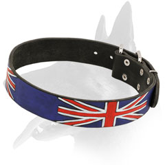 Belgian Malinois Collar Genuine Leather and British Design