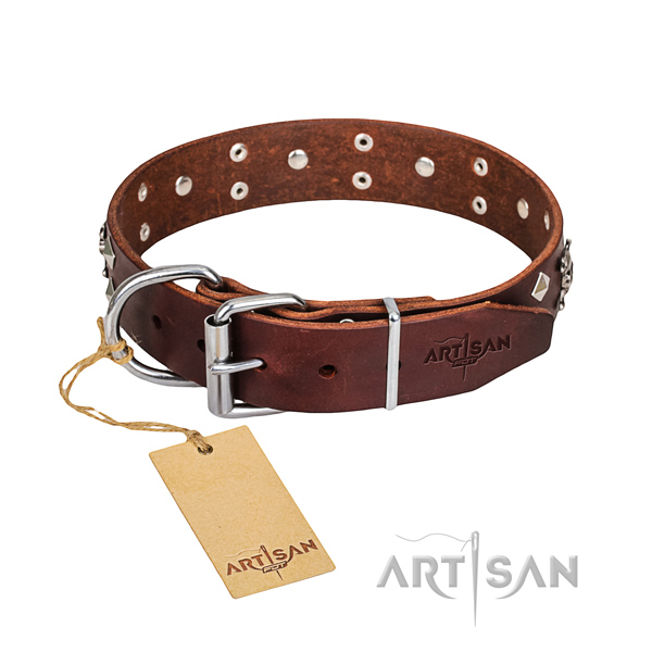 Tough leather dog collar with durable fittings