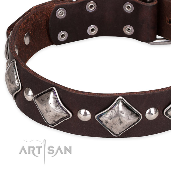 Quick to fasten leather dog collar with extra strong non-rusting hardware