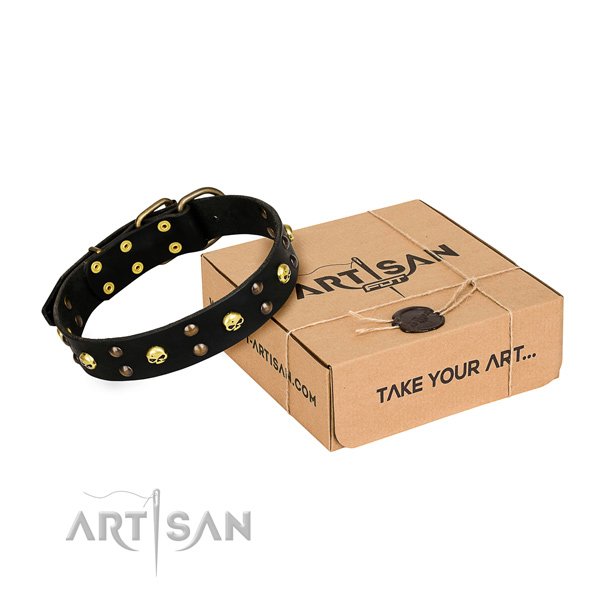 Day-to-day leather dog collar with elegant studs