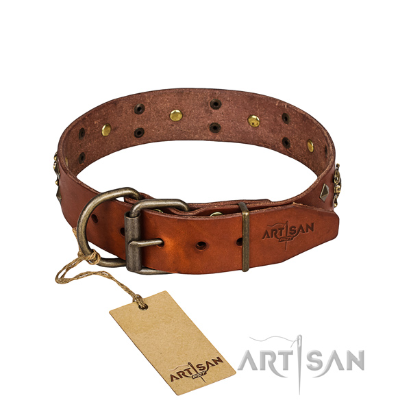 Tough leather dog collar with strong fittings