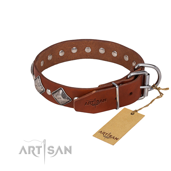 Natural leather dog collar with thoroughly polished leather strap