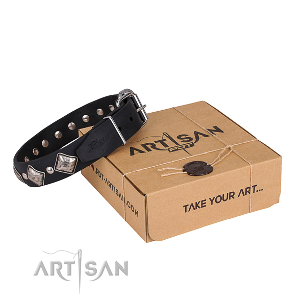 Everyday leather dog collar with exciting decorations