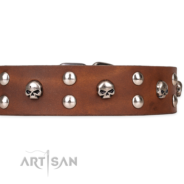 Full grain leather dog collar with worked out leather surface