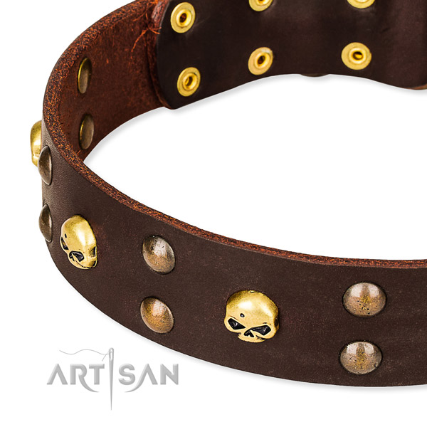 NaturalAwesome leather dog collar for training
