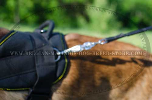 Malinois Nylon Harness With Rustproof Hardware