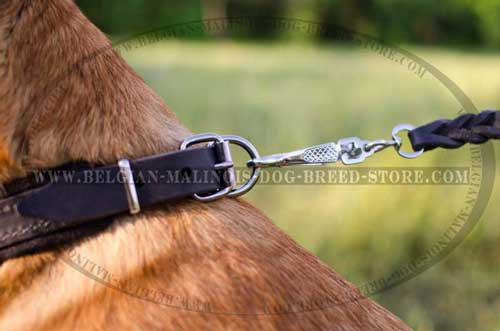 Easy-to-use Belgian Malinois Leather Collar