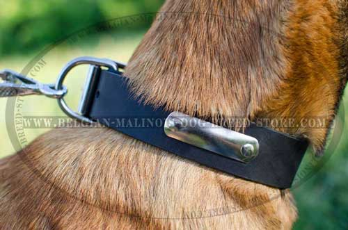 Handy Belgian Malinois Leather Collar