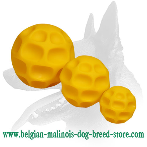 Reliable Tetraflex Ball for Belgian Malinois
