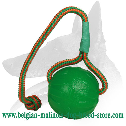 Colorful Chewing Ball for Belgian Malinois