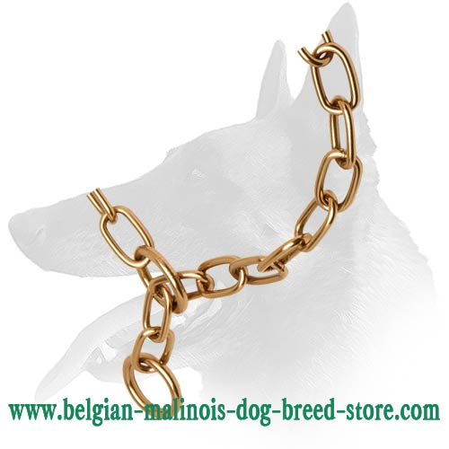 Belgian Malinois Reliable Choke Collar