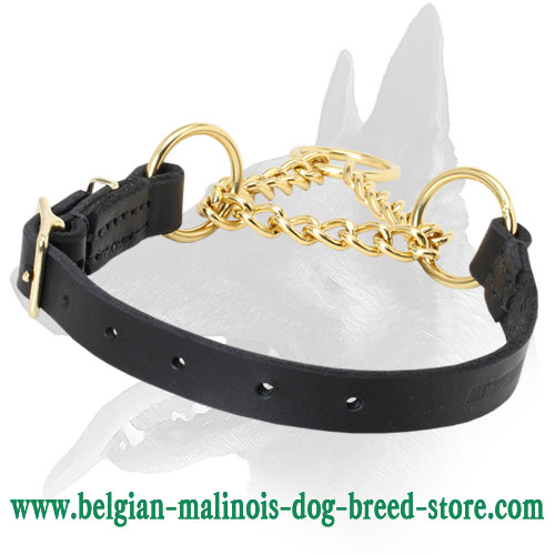 Martingale Dog Collar for Belgian Malinois Training