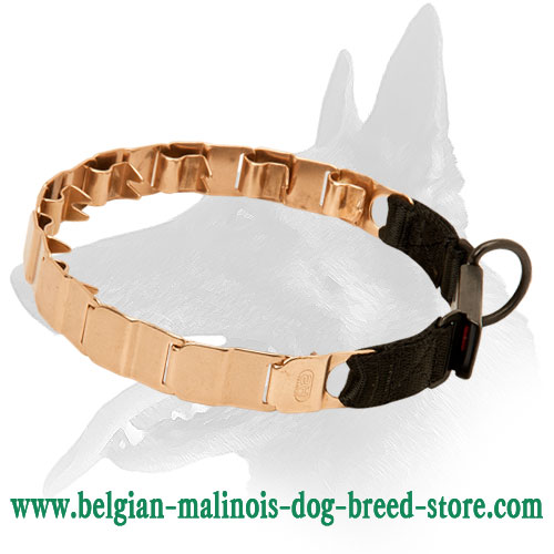 Belgian Malinois Training Collar Made of High-Quality Curogan