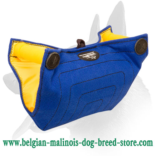 Belgian Malinois Puppy Bite Builder with Padded Handles