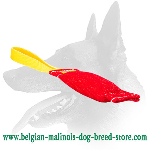 Belgian Malinois Bite Tug for Development of Healthy Prey