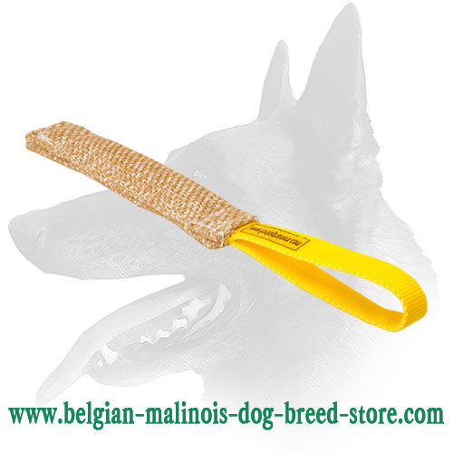 Belgian Malinois Puppy Bite Tug Equipped with Strong Handle