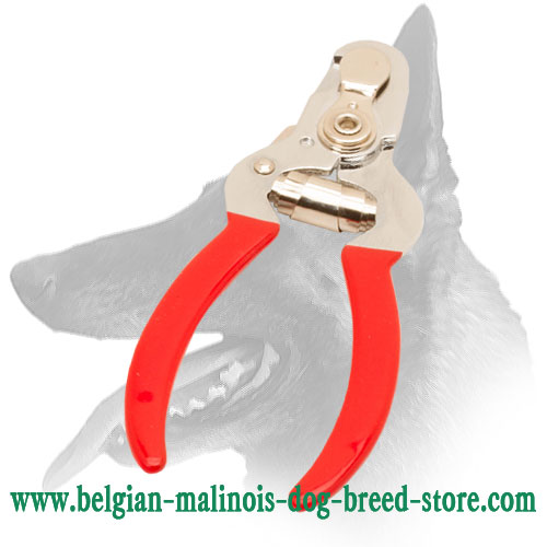 High-Quality Nail Trimmer for Belgian Malinois
