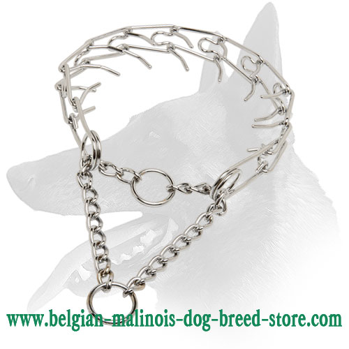 Durable Dog Collar for Belgian Malinois