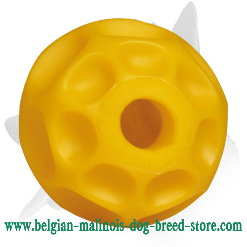 Tetraflex Ball for Belgian Malinois for Training Chewing Skills