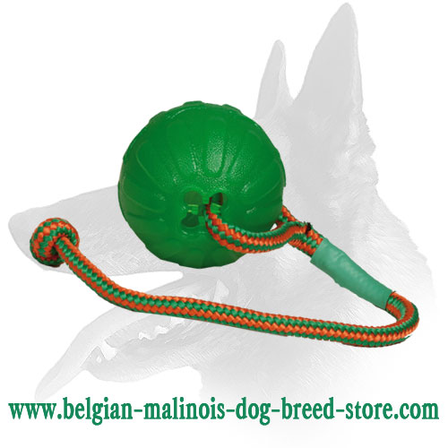 Bright Special Rubber Ball for Belgian Malinois
