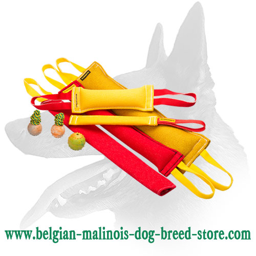 Belgian Malinois Bite Training Set for Dog Training