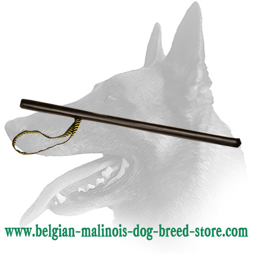 Plastic Stick Covered with Leather for Belgian Malinois