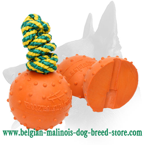 Perfect For Training Belgian Malinois Rubber Ball