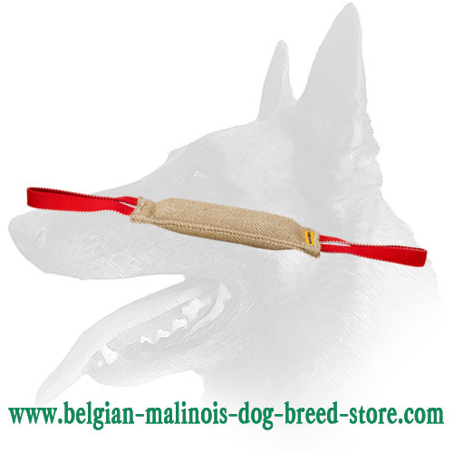 Belgian Malinois jute bite tug with two handles