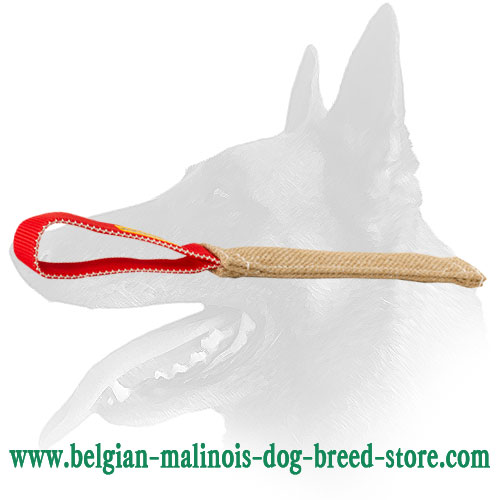 Belgian Malinois pocket toy for puppies