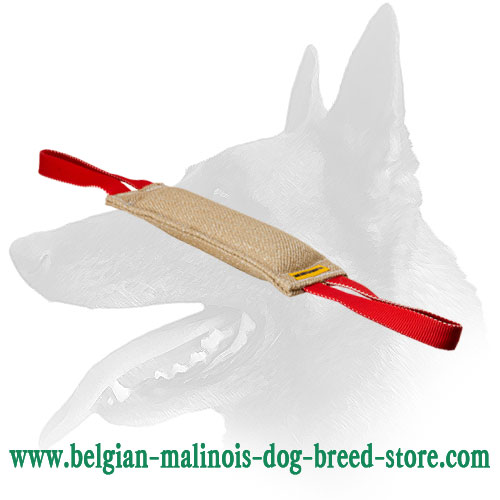 Belgian Malinois Bite Tug Equipped with 2 Strong Handles