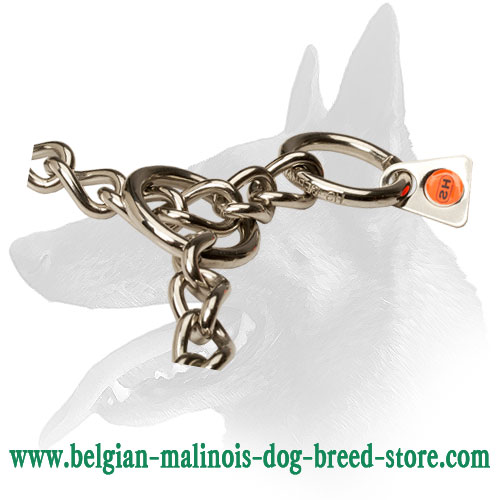 Extra Durable Choke Collar for Belgian Malinois