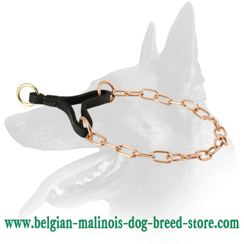 Strong Chain Dog Collar for Belgian Malinois