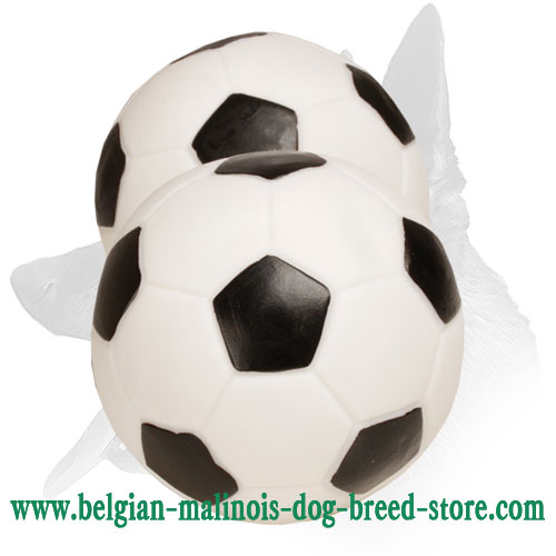 Black-&-White Belgian Malinois Soccer Ball