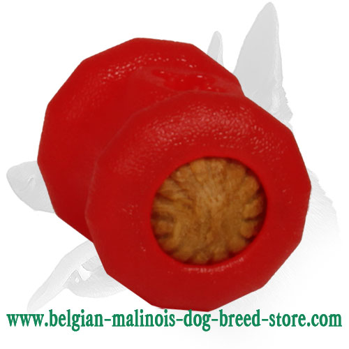 Bright Special Rubber Toy for Belgian Malinois