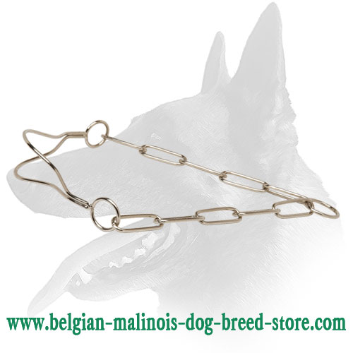 Reliable Dog Collar for Belgian Malinois