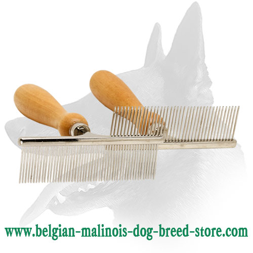 Belgian Malinois Brush with Durable Wooden Handle