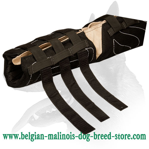Belgian Malinois hidden bite sleeve on Velcro